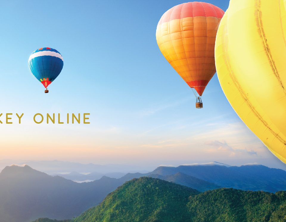 Seoul Monkey Online Banner