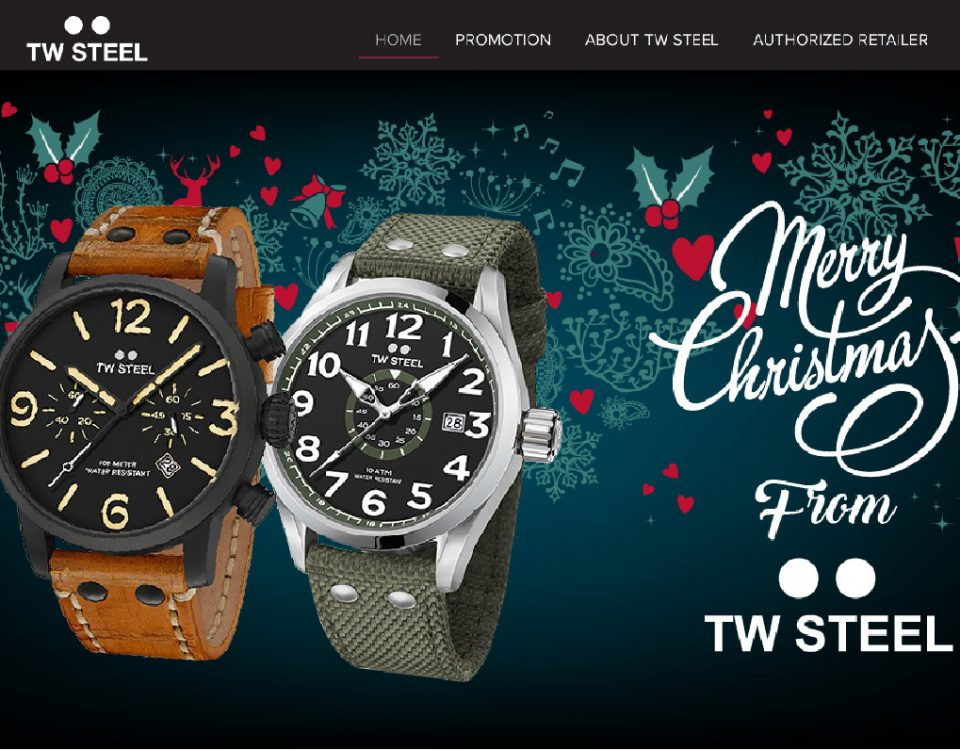 TW Steel Product Website Design