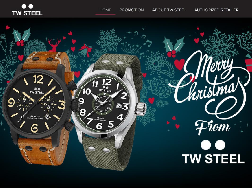 TW Steel Product Website Design